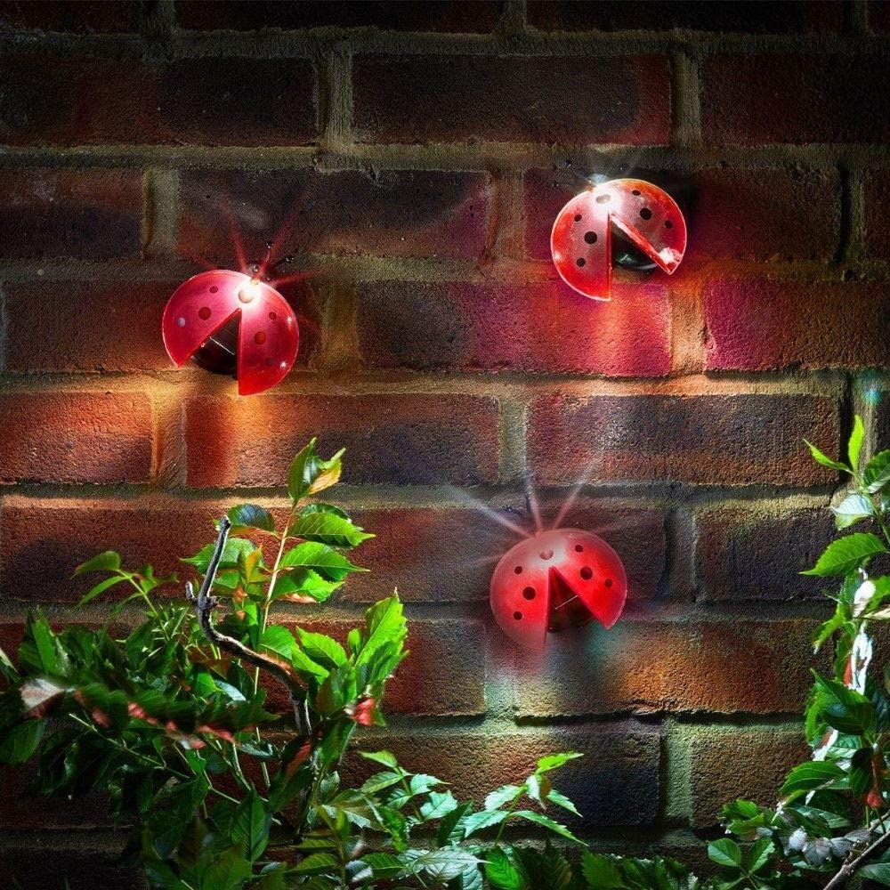Ladybird Solar Lights