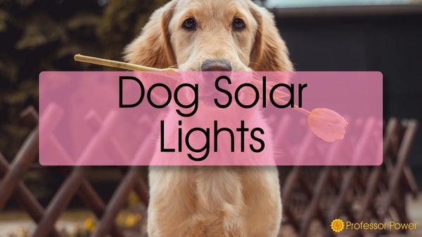Dog Solar Garden Lights