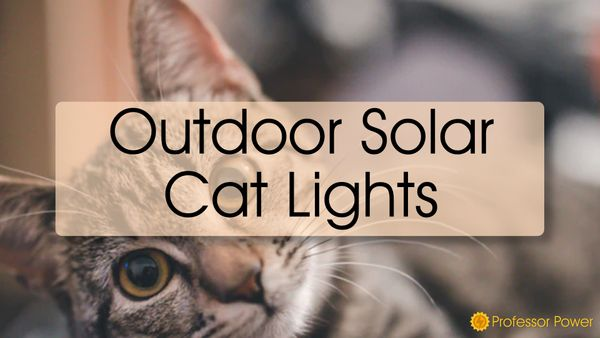 Outdoor Solar Cat Lights